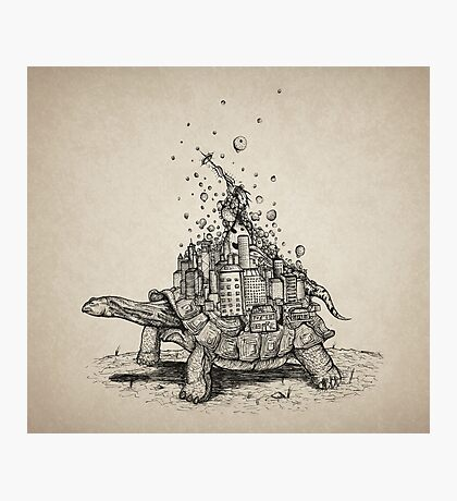 Tortoise Town Photographic Print