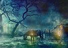 The Pit Pony by Trudi's Images