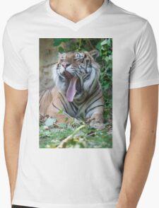 tiger at the zoo Mens V-Neck T-Shirt