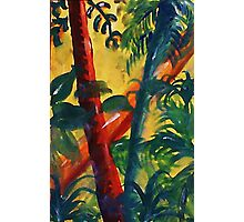 In the tropic mist, watercolor Photographic Print