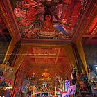 House of Buddha - Chang Mai, Thailand by mikenyff