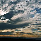Dixon, California Sunset by NancyC