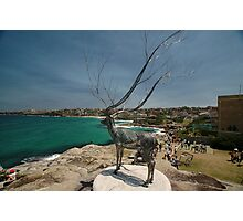 Wire Elk @ Sculptures By The Sea 2011 Photographic Print