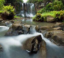 Mokoroa Falls Collection # 2 by Michael Treloar