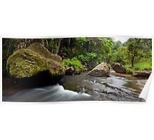 Mokoroa Falls Collection # 8 Poster