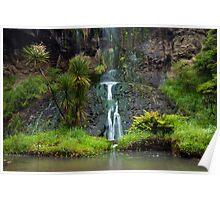 Mokoroa Falls Collection # 6 Poster