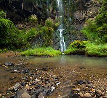 Mokoroa Falls Collection # 5 by Michael Treloar