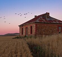 Burra Homestead Ruin & Twilight Birds by pablosvista2