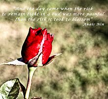 ... and the day came by Maree Cardinale
