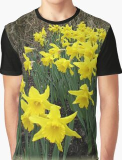Easter Daffodils Vignette Graphic T-Shirt