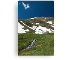 Snowmelt Stream Canvas Print
