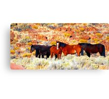 Wild Horses in Nevada Canvas Print