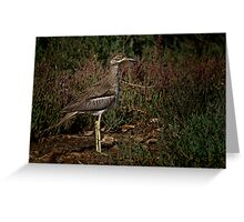 Standing and Looking Greeting Card