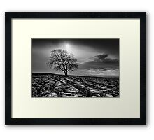 Malham Tree 02 - Yorkshire Dales, UK Framed Print