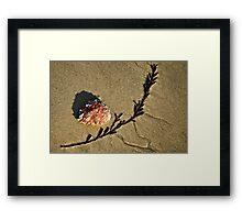 Sand Art ~ Lyme Regis Framed Print