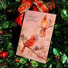 Christmas Card #2 by CatKV