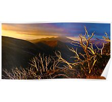 0389 Mt Hotham Brush Poster