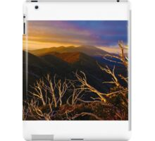 0389 Mt Hotham Brush iPad Case/Skin