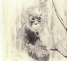 Orangutan sketch - pencil by gogston