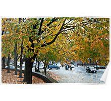 Whispering trees Poster