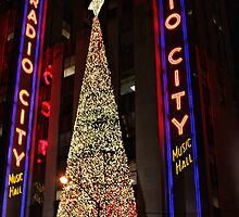 A New York Christmas by Barbara  Brown