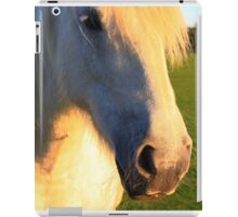 My Little Pony iPad Case/Skin