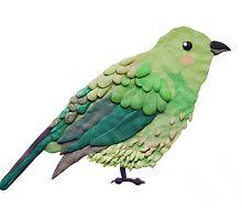 Plasticine bird by Anastasiia Kucherenko