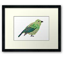Plasticine bird Framed Print