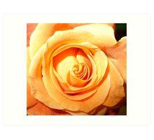 Peach Serenity Art Print