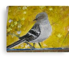 Mocking bird in tree. Canvas Print