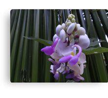 Blossom Of Weed - Flor De Hierbajo Canvas Print