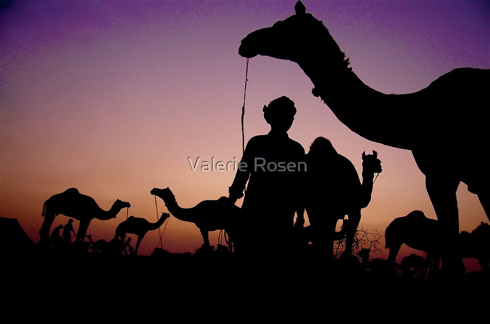 Pushkar Sunset by Valerie Rosen
