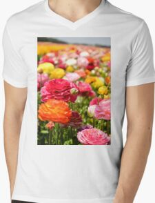ield of multicolor cultivated Buttercup (Ranunculus) flowers Mens V-Neck T-Shirt