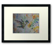Hummingbird 2 Framed Print