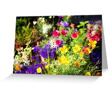 flowering garden. Yellow and purple blooming flowers Greeting Card
