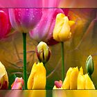 Tulips On Silver by Marvin Mast