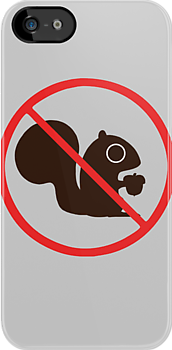 No Squirrels by Jenn Inashvili