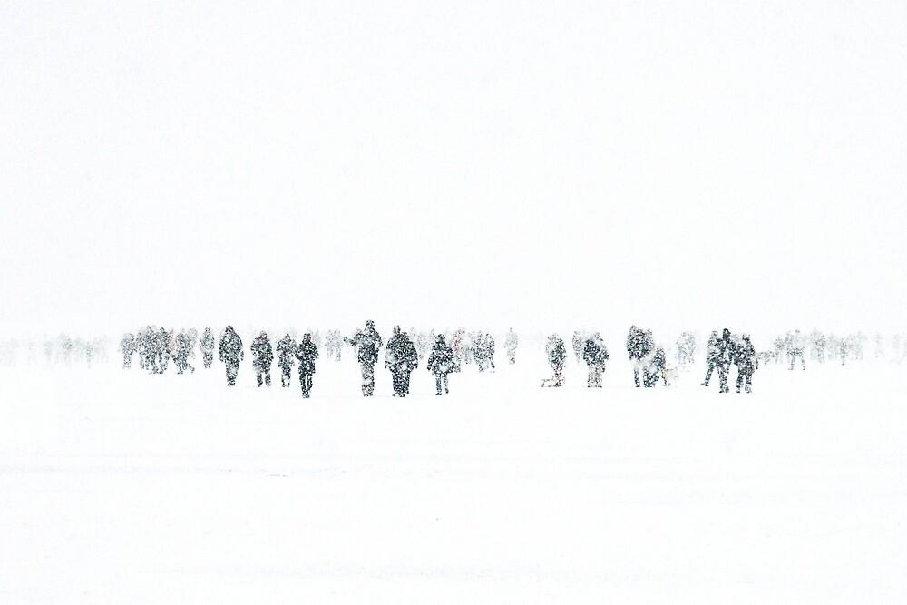 winter wanderland by codswollop