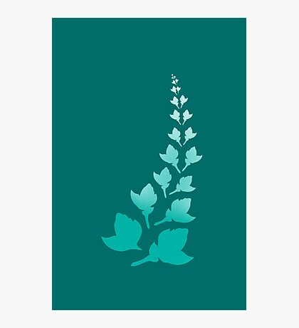 Teal [Print and iPhone / iPod Case] Photographic Print