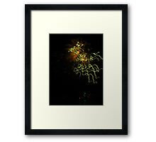slowmotion french fireworks - abstract in the sky #3 Framed Print