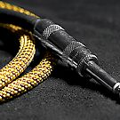 Guitar Cable and Plug by Glenn Cecero