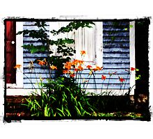 Spring Rain Photographic Print