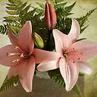 Two Pink Oriental Lilies by Sandra Foster