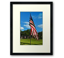 The Red, White and Blue Framed Print