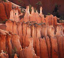 HooDoos (1) Bryce Canyon by Barbara Burkhardt