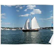 Sails Coming Home to the Harbor Poster