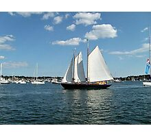 Sails Coming Home to the Harbor Photographic Print