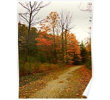 Fall grandeur Poster