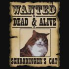 Schrodinger's Cat by marinasinger