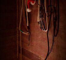 December Tackroom by kurrawinya
